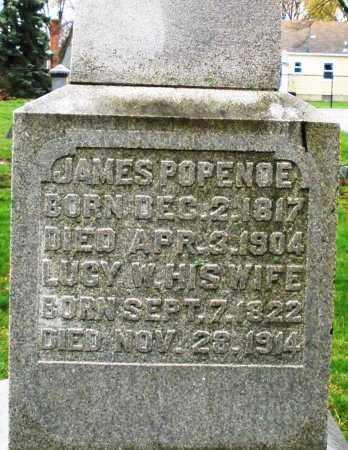 POPENOE, LUCY W. - Montgomery County, Ohio | LUCY W. POPENOE - Ohio Gravestone Photos