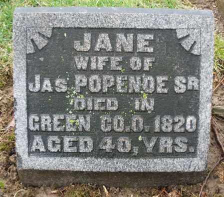 POPENOE, JANE - Montgomery County, Ohio | JANE POPENOE - Ohio Gravestone Photos