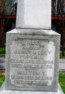 POPENOE, MABEL - Montgomery County, Ohio | MABEL POPENOE - Ohio Gravestone Photos