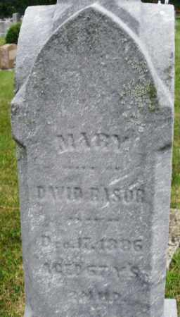 RASOR, MARY - Montgomery County, Ohio | MARY RASOR - Ohio Gravestone Photos