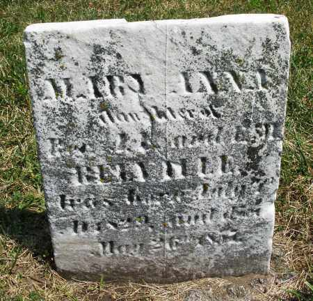 RE---LE, MARY ANN - Montgomery County, Ohio | MARY ANN RE---LE - Ohio Gravestone Photos