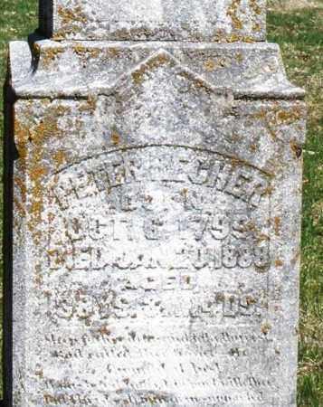 RECHER, PETER - Montgomery County, Ohio   PETER RECHER - Ohio Gravestone Photos