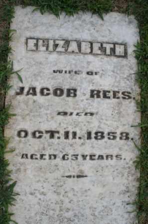 REES, ELIZABETH - Montgomery County, Ohio | ELIZABETH REES - Ohio Gravestone Photos