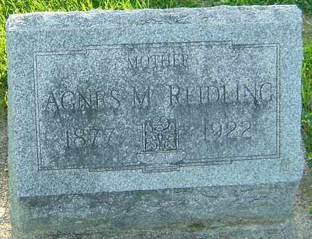 CALLAHAN REIDLING, AGNES M - Montgomery County, Ohio | AGNES M CALLAHAN REIDLING - Ohio Gravestone Photos