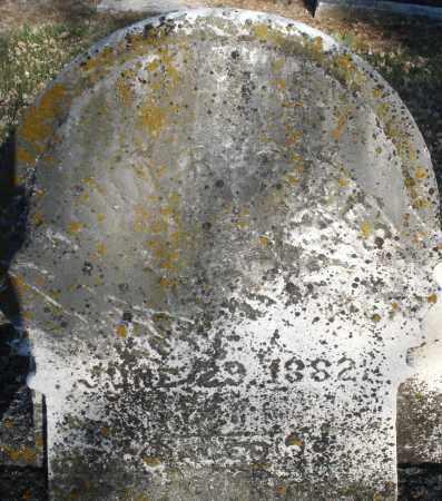 ROADES/RHOADES, JOHN - Montgomery County, Ohio | JOHN ROADES/RHOADES - Ohio Gravestone Photos