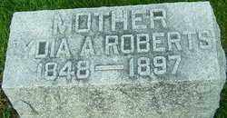 WRIGHT ROBERTS, LYDIA - Montgomery County, Ohio | LYDIA WRIGHT ROBERTS - Ohio Gravestone Photos