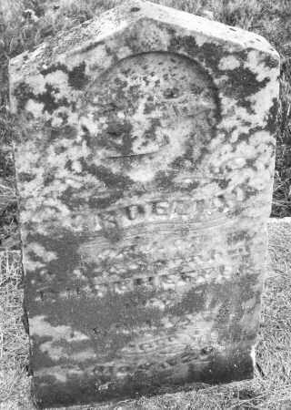 RODEHEFFER, CORDELIA E. - Montgomery County, Ohio | CORDELIA E. RODEHEFFER - Ohio Gravestone Photos