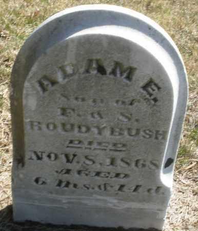 ROUDYBUSH, ADAM E. - Montgomery County, Ohio | ADAM E. ROUDYBUSH - Ohio Gravestone Photos