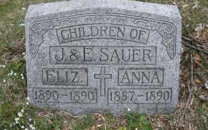 SAUER, ELIZABETH - Montgomery County, Ohio | ELIZABETH SAUER - Ohio Gravestone Photos