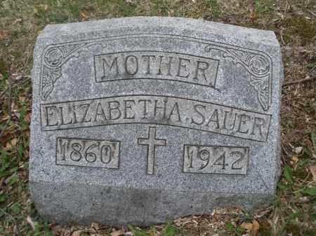SAUER, ELIZABETHA - Montgomery County, Ohio | ELIZABETHA SAUER - Ohio Gravestone Photos