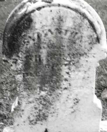 SCHAURER, SAMANTHA ? - Montgomery County, Ohio | SAMANTHA ? SCHAURER - Ohio Gravestone Photos