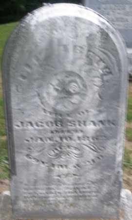 SHANK, ELIZABETH - Montgomery County, Ohio | ELIZABETH SHANK - Ohio Gravestone Photos