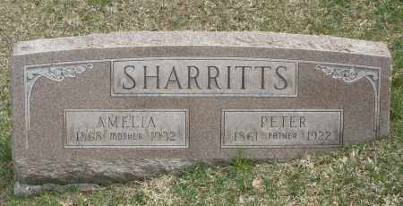 SHARRITTS, AMELIA - Montgomery County, Ohio | AMELIA SHARRITTS - Ohio Gravestone Photos