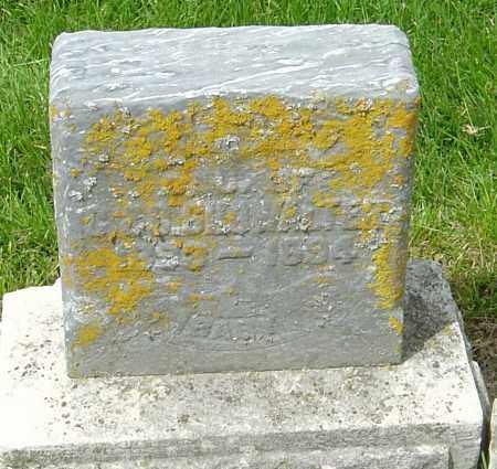 SHOWALTER, ETHEL - Montgomery County, Ohio | ETHEL SHOWALTER - Ohio Gravestone Photos