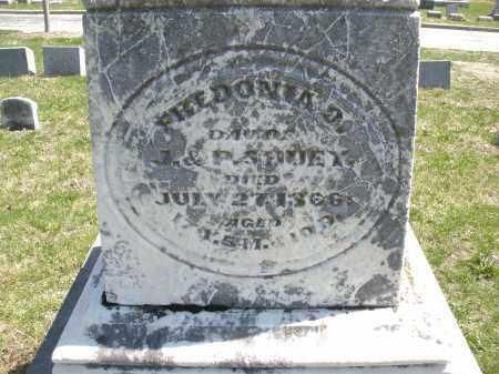 SHUEY, FHEDONIA ? - Montgomery County, Ohio | FHEDONIA ? SHUEY - Ohio Gravestone Photos