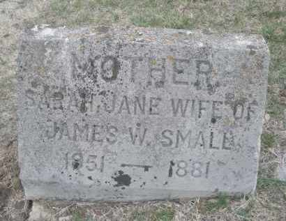 SMALL, SARAH JANE - Montgomery County, Ohio | SARAH JANE SMALL - Ohio Gravestone Photos