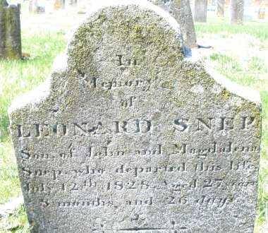 SNEP, LEONARD - Montgomery County, Ohio | LEONARD SNEP - Ohio Gravestone Photos