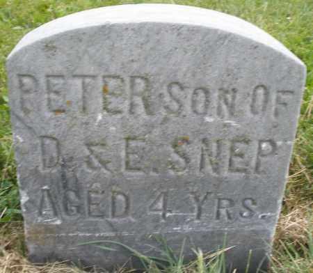 SNEP, PETER - Montgomery County, Ohio | PETER SNEP - Ohio Gravestone Photos
