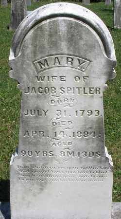 SPITLER, MARY - Montgomery County, Ohio | MARY SPITLER - Ohio Gravestone Photos