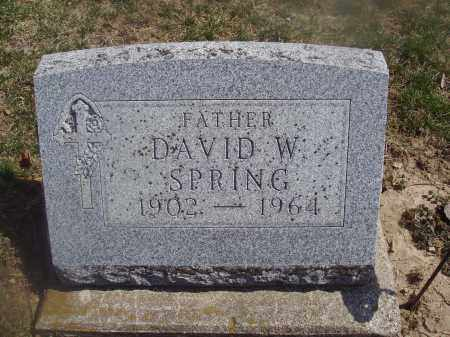 SPRING, DAVID W. - Montgomery County, Ohio | DAVID W. SPRING - Ohio Gravestone Photos
