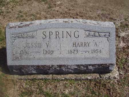 BUSSARD SPRING, JESSIE VIOLA - Montgomery County, Ohio | JESSIE VIOLA BUSSARD SPRING - Ohio Gravestone Photos