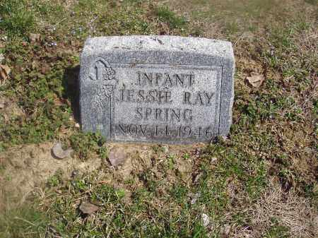 SPRING, JESSIE RAY - Montgomery County, Ohio | JESSIE RAY SPRING - Ohio Gravestone Photos