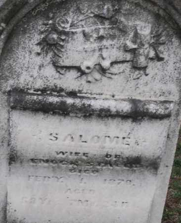 STALEY, SALOME - Montgomery County, Ohio | SALOME STALEY - Ohio Gravestone Photos