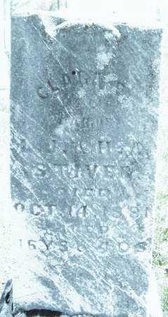STIVER, CLARA E. - Montgomery County, Ohio | CLARA E. STIVER - Ohio Gravestone Photos