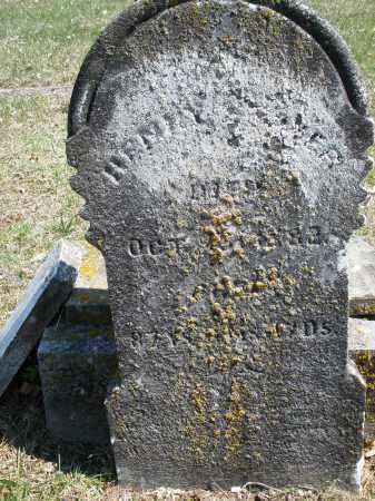 STIVER, HENRY - Montgomery County, Ohio | HENRY STIVER - Ohio Gravestone Photos