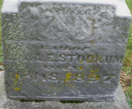 STOCKUM, MARY - Montgomery County, Ohio | MARY STOCKUM - Ohio Gravestone Photos