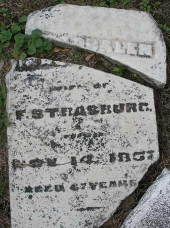 STRASBURG, MAGDALEN - Montgomery County, Ohio | MAGDALEN STRASBURG - Ohio Gravestone Photos