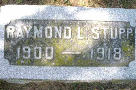 STUPP, RAYMOND L. - Montgomery County, Ohio | RAYMOND L. STUPP - Ohio Gravestone Photos