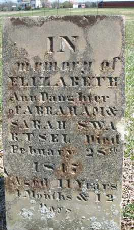 SWARTSEL, ELIZABETH ANN - Montgomery County, Ohio | ELIZABETH ANN SWARTSEL - Ohio Gravestone Photos