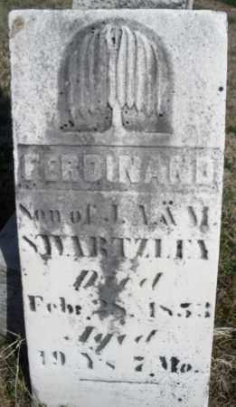 SWARTZLEY, FERDINAND - Montgomery County, Ohio | FERDINAND SWARTZLEY - Ohio Gravestone Photos