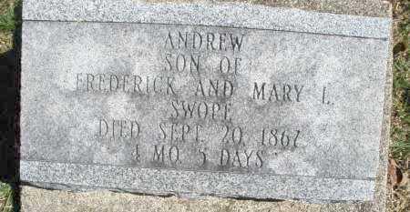 SWOPE, ANDREW - Montgomery County, Ohio | ANDREW SWOPE - Ohio Gravestone Photos