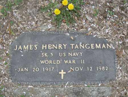 TANGEMAN, JAMES HENRY - Montgomery County, Ohio | JAMES HENRY TANGEMAN - Ohio Gravestone Photos