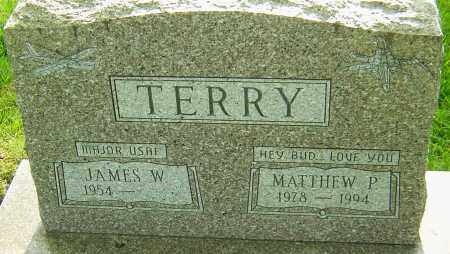 TERRY, MATTHEW P - Montgomery County, Ohio | MATTHEW P TERRY - Ohio Gravestone Photos