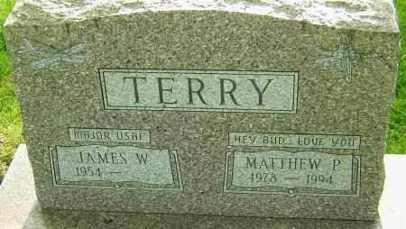 TERRY, MATTHEW P - Montgomery County, Ohio   MATTHEW P TERRY - Ohio Gravestone Photos