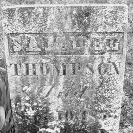 THOMPSON, SAMUEL - Montgomery County, Ohio | SAMUEL THOMPSON - Ohio Gravestone Photos
