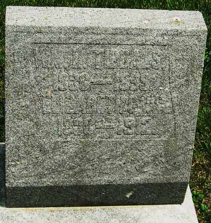TIBBALS, WILLIAM M - Montgomery County, Ohio | WILLIAM M TIBBALS - Ohio Gravestone Photos