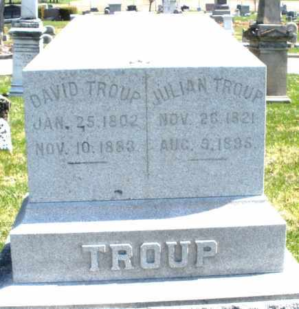 TROUP, DAVID - Montgomery County, Ohio | DAVID TROUP - Ohio Gravestone Photos