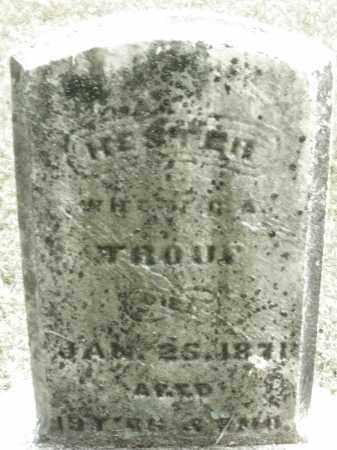 TROUP, HESTER - Montgomery County, Ohio | HESTER TROUP - Ohio Gravestone Photos