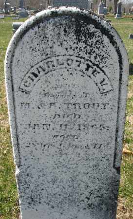TROUT, CHARLOTTE - Montgomery County, Ohio | CHARLOTTE TROUT - Ohio Gravestone Photos