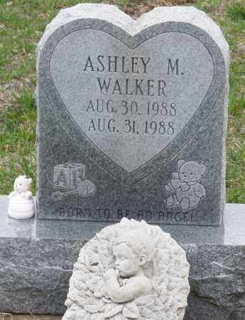 WALKER, ASHLEY M. - Montgomery County, Ohio | ASHLEY M. WALKER - Ohio Gravestone Photos
