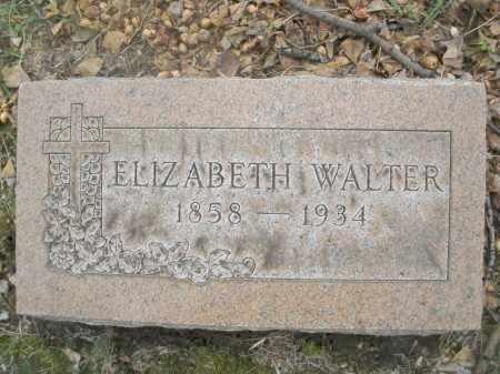WALTER, ELIZABETH - Montgomery County, Ohio | ELIZABETH WALTER - Ohio Gravestone Photos