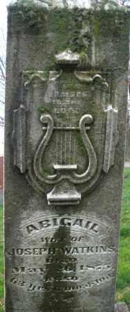 WATKINS, ABIGAIL - Montgomery County, Ohio | ABIGAIL WATKINS - Ohio Gravestone Photos