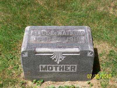HAINES WATKINS, ALICE E - Montgomery County, Ohio | ALICE E HAINES WATKINS - Ohio Gravestone Photos