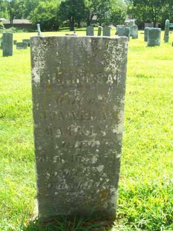 WATKINS, CLARISSA - Montgomery County, Ohio | CLARISSA WATKINS - Ohio Gravestone Photos