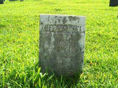 WATKINS, THOMAS - Montgomery County, Ohio | THOMAS WATKINS - Ohio Gravestone Photos