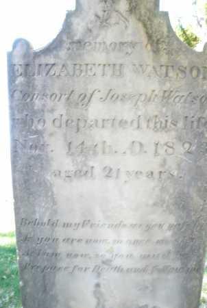 WATSON, ELIZABETH - Montgomery County, Ohio | ELIZABETH WATSON - Ohio Gravestone Photos